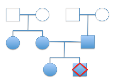 Genealogic tree of family, indicating three generations. Male and female are denoted as squares and circles respectively. Filled shapes denote available 23andMe genomes. The red diamond indicates Manuel Corpas' position in the tree.